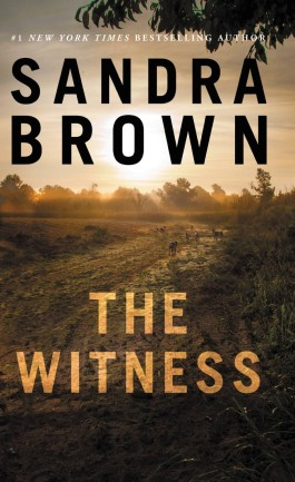 Sandra Brown The Witness